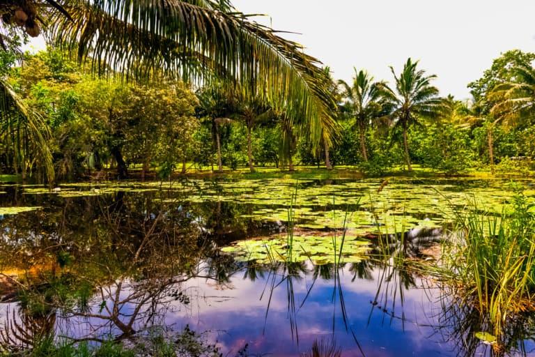 10+2 ciudades de Cuba más bonitas 15