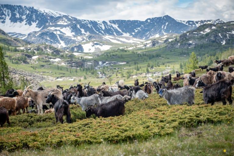 8 ciudades de Mongolia más bonitas 5