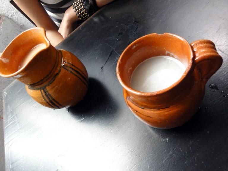 100 comidas típicas de México (+imágenes) 83