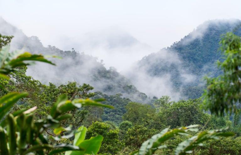 20 lugares turísticos de Ecuador 22