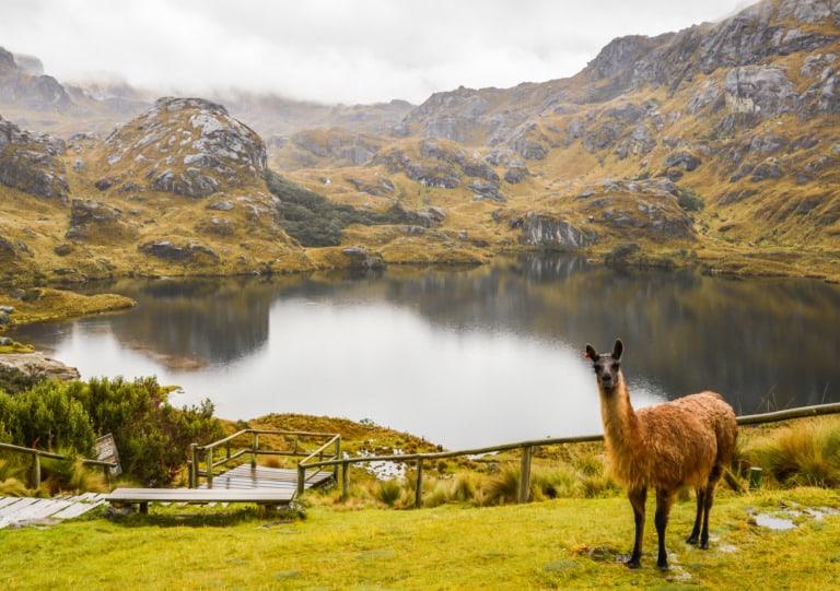 20 lugares turísticos de Ecuador 25