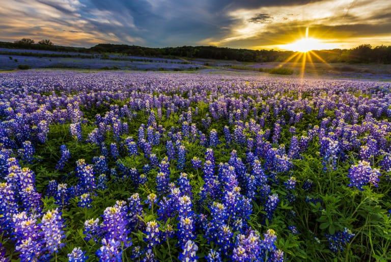 25+ pueblos de Texas más bonitos 9