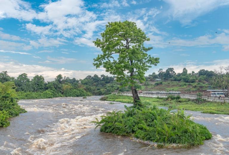 20 ríos más largos del mundo 10