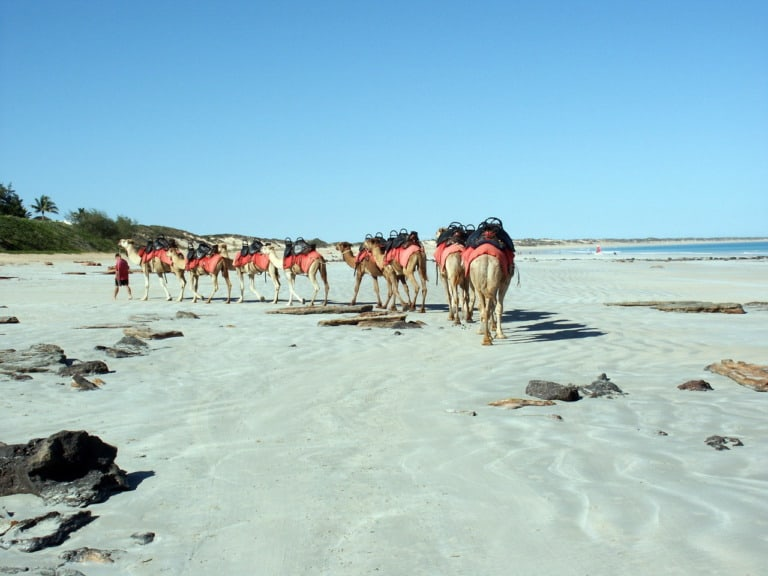 17 mejores playas de Australia 14