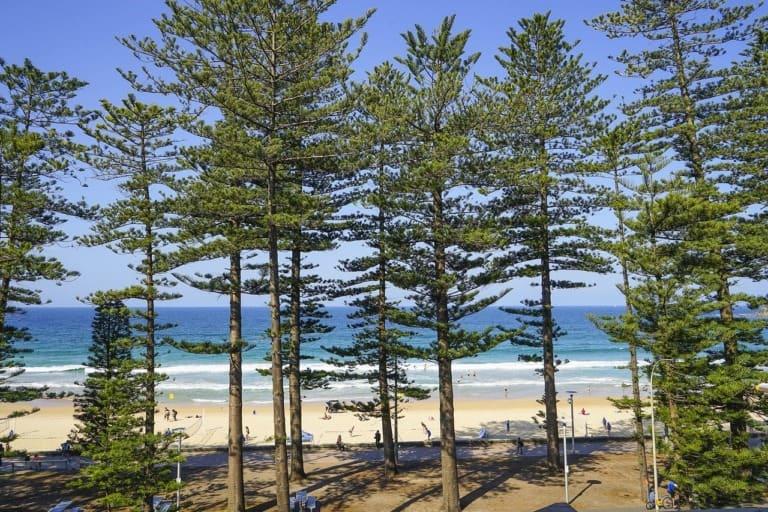 17 mejores playas de Australia 3