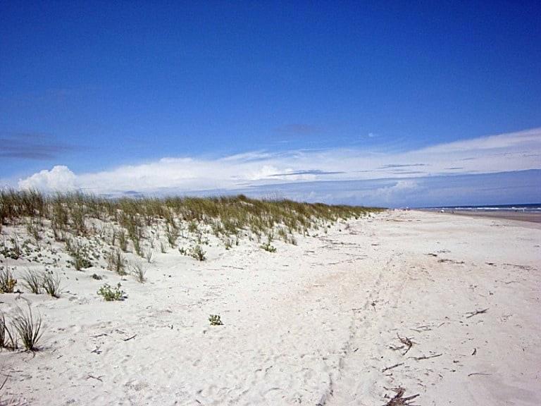 13 mejores playas de Carolina del Sur 4