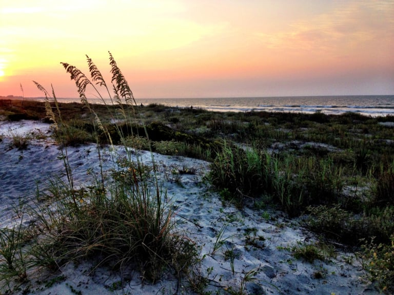 13 mejores playas de Carolina del Sur 1