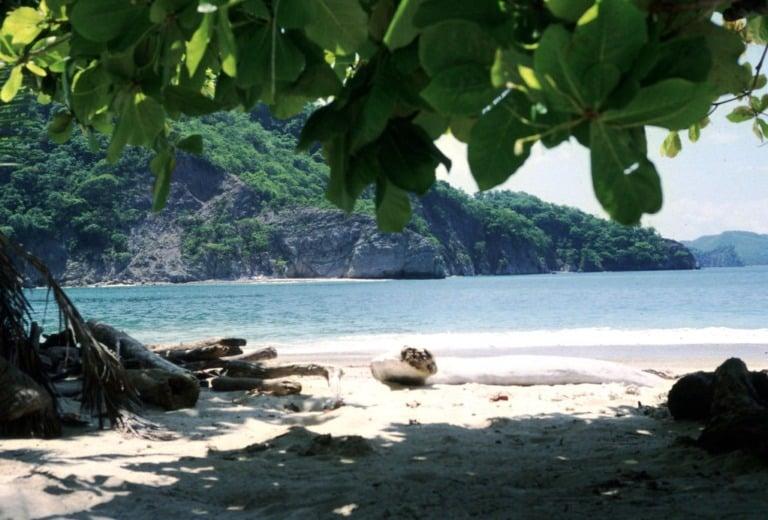 17 mejores playas de Costa Rica 12