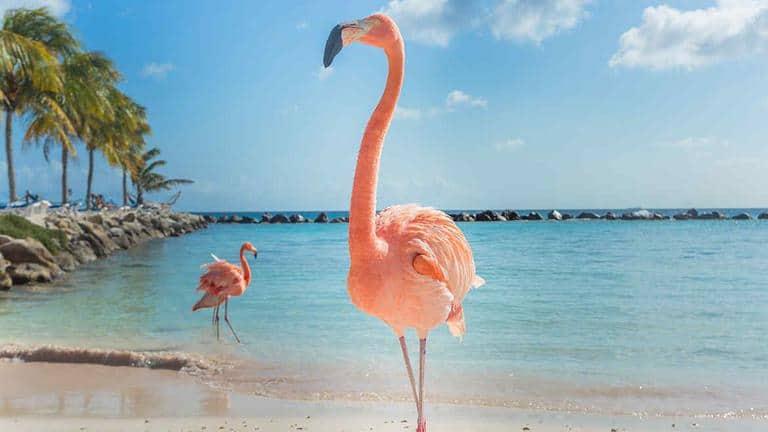 22 mejores playas de Cuba 3