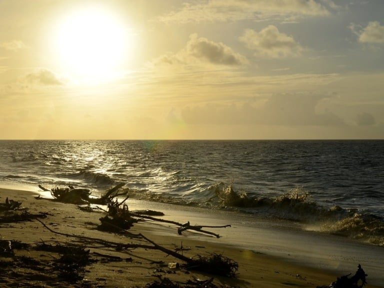 7 mejores playas de Surinam 1