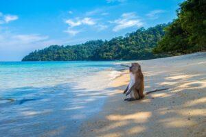 17 mejores playas de Tailandia 4