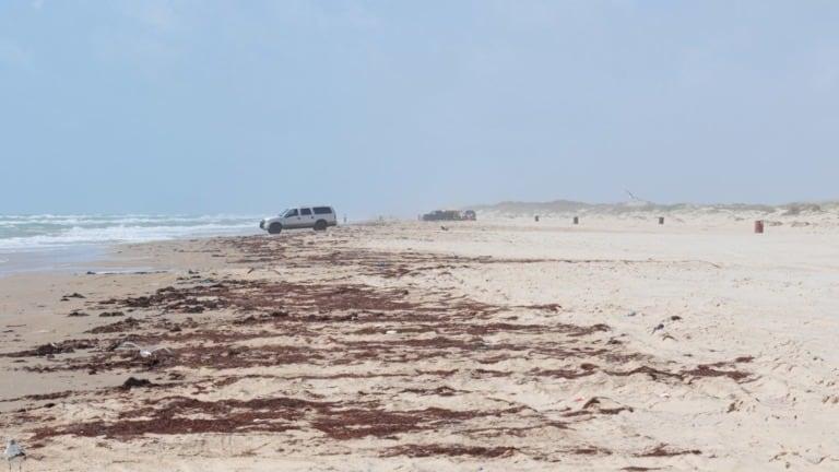 12 mejores playas de Texas 1