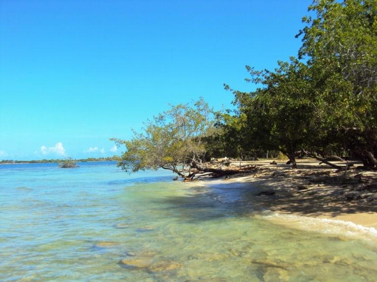 12 mejores playas de Venezuela 8