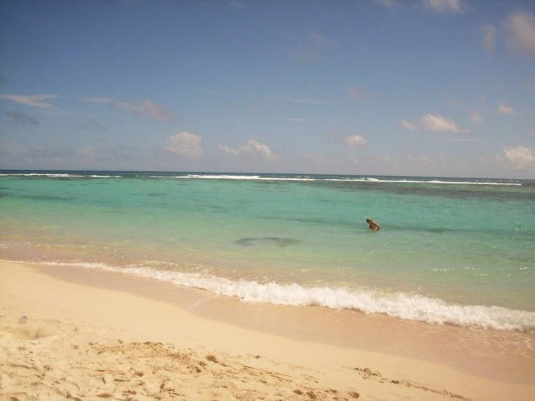 12 mejores playas de Venezuela 6