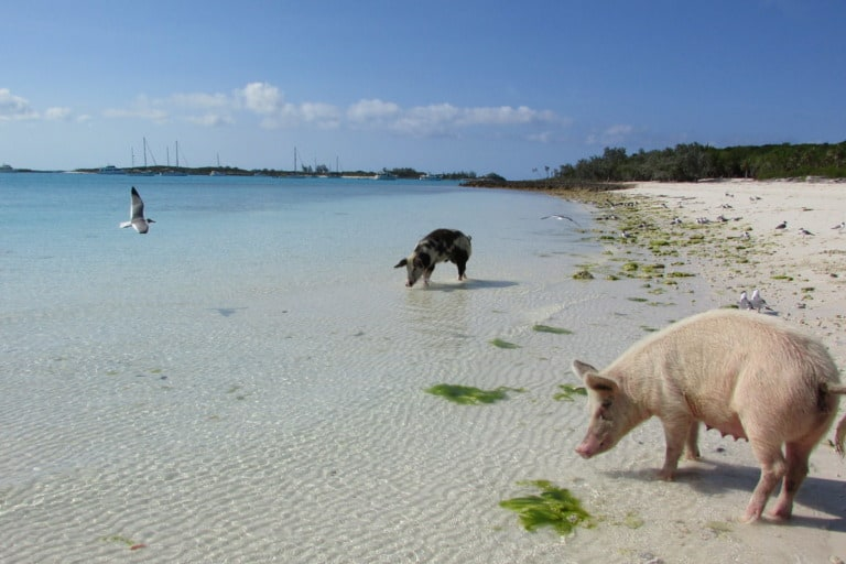 50 mejores playas del mundo 41