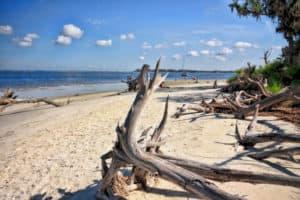 15 mejores playas cerca de Atlanta 12