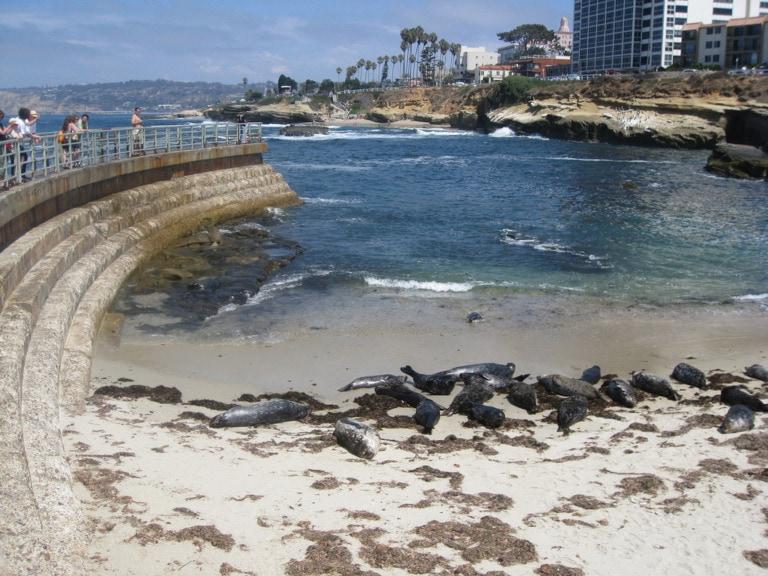 Dónde alojarse en San Diego 2
