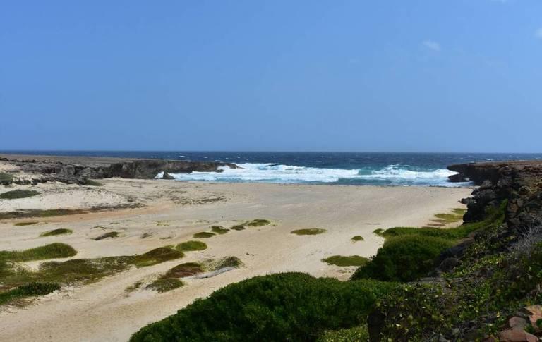 17 mejores playas de Aruba 8
