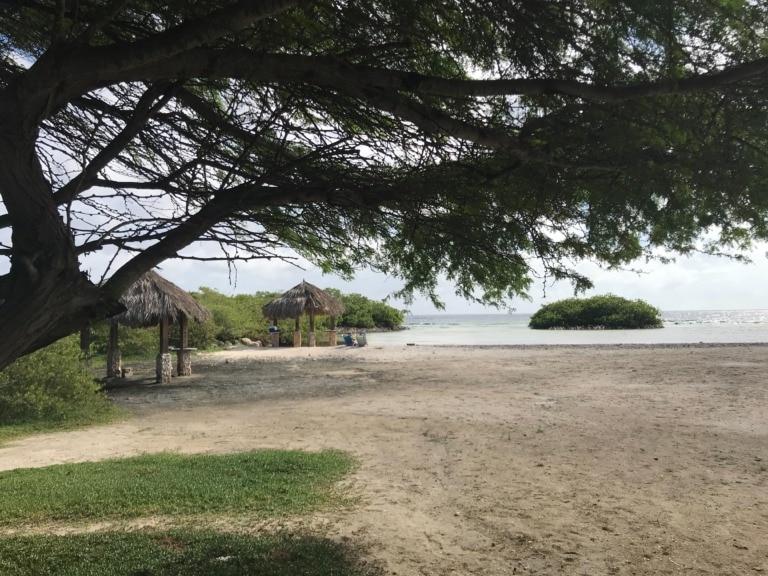 17 mejores playas de Aruba 14