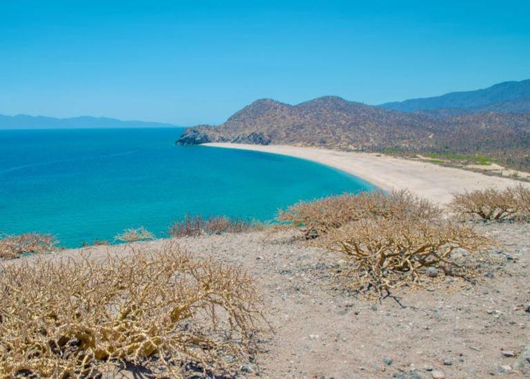 18 mejores playas de Baja California 8