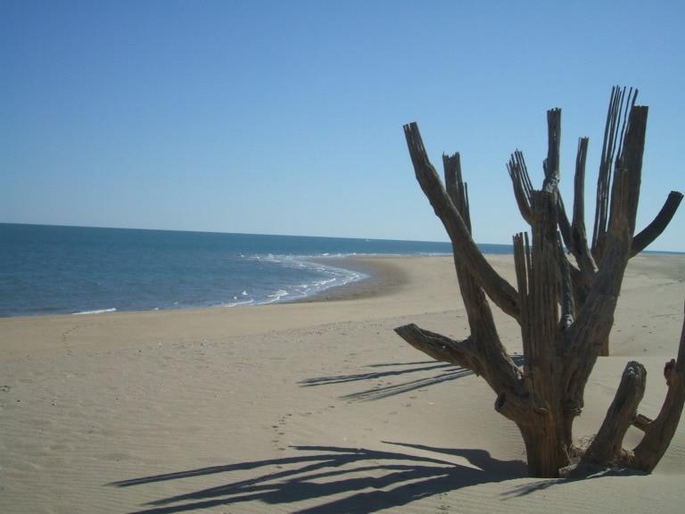 18 mejores playas de Baja California 13