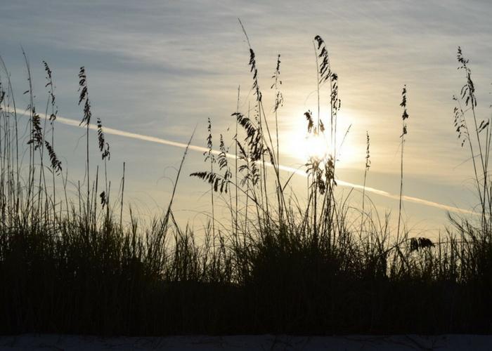 10 mejores playas de Fort Myers 4