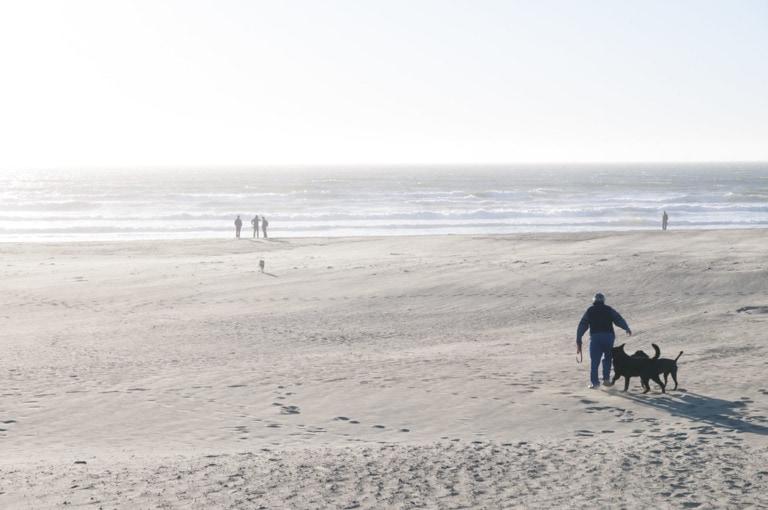 28 mejores playas de la Bahía de San Francisco 3