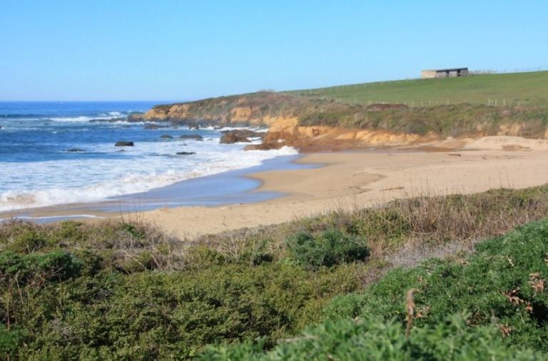 28 mejores playas de la Bahía de San Francisco 17