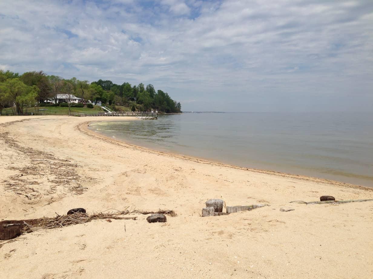 16 mejores playas de Maryland 5