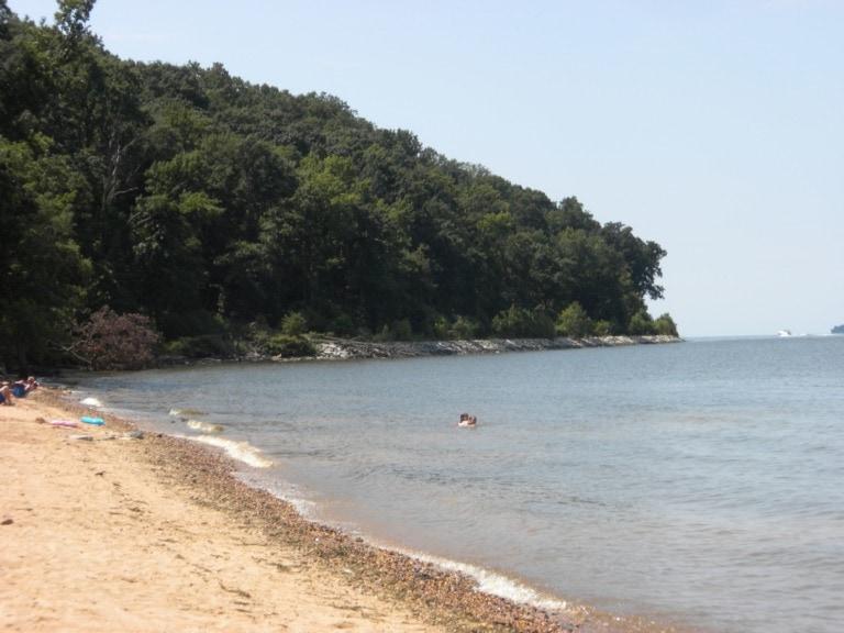 16 mejores playas de Maryland 9