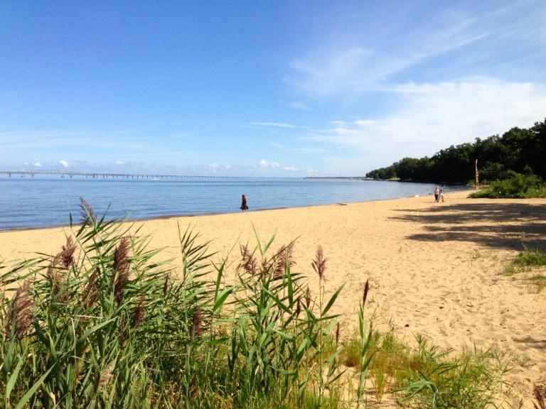 16 mejores playas de Maryland 12