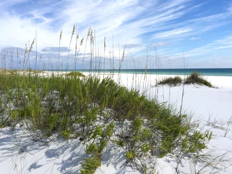 10 mejores playas de Pensacola 4