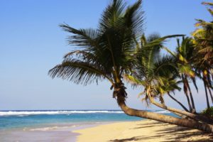 10 mejores playas de Punta Cana 1