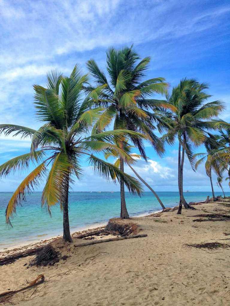 10 mejores playas de Punta Cana 3
