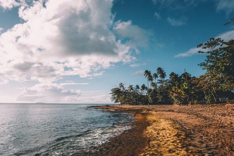 7 mejores playas de Rincón 6