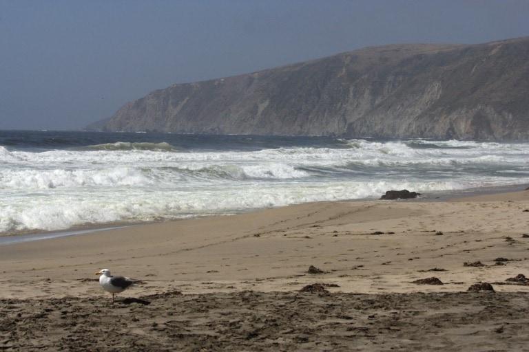 12 mejores playas de San Francisco 10