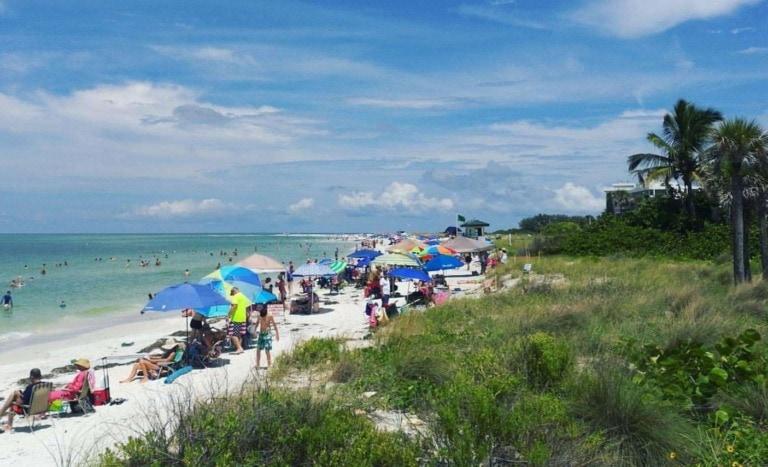 10 mejores playas de Sarasota 2