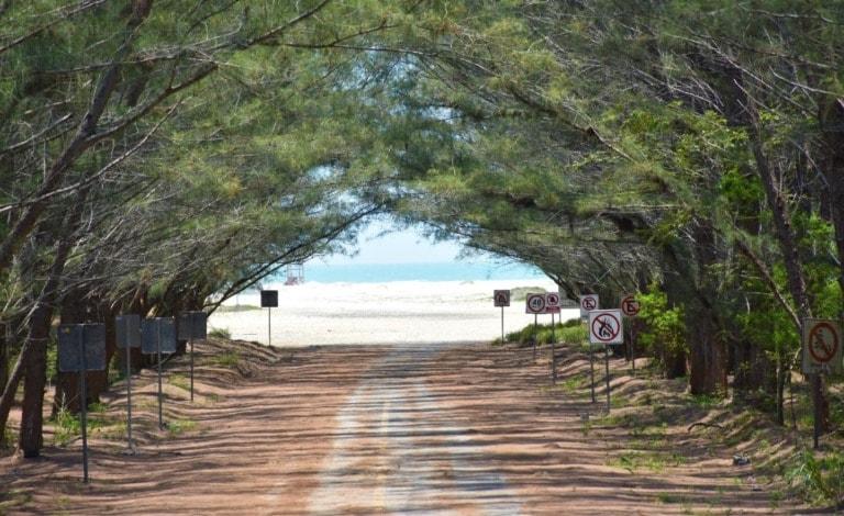 11 mejores playas de Tamaulipas 8