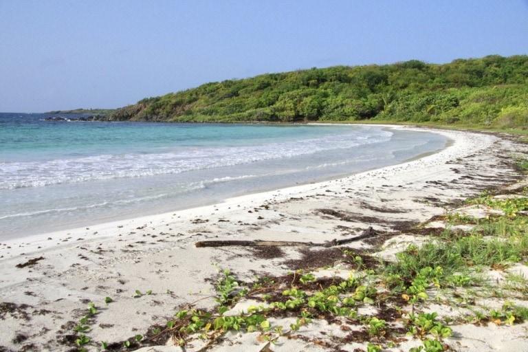 15 mejores playas de Vieques 9