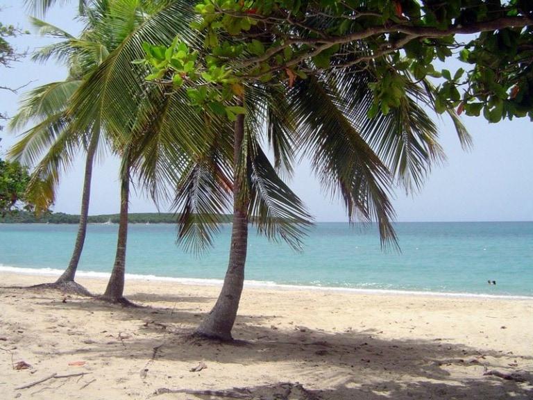 15 mejores playas de Vieques 2